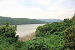 Bossen, rivieren, bergen Royalty-vrije Stock Foto's