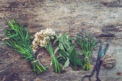 Bossen van aan boord het helen van kruiden, oude schaar Kruiden perforatum Medicine royalty-vrije stock afbeeldingen