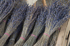 Bossen van droge Lavendel Stock Foto