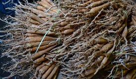 Bossen van droog wortelgewas stock afbeelding