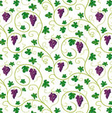 Bossen van druiven stock illustratie