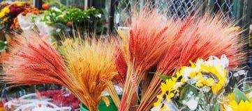 Bossen van Gekleurde Tarwe royalty-vrije stock foto