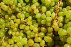 Bossen van groene druiven op de opslagteller stock afbeeldingen