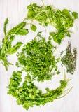 Bossen van Groene kruiden voor salade: Lavas, borageeaves, tuinkers, de sla van de mijnwerker Royalty-vrije Stock Afbeeldingen