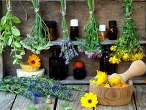 Bossen van het helen van kruiden - munt, duizendblad, lavendel, klaver, hyssop, duizendblad, mortier met bloemen van calendula en stock fotografie