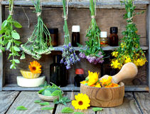 Bossen van het helen van kruiden - munt, duizendblad, lavendel, klaver, hyssop, duizendblad, mortier met bloemen van calendula en stock afbeelding