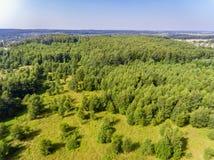 Bossen van hierboven, Wit-Rusland stock foto