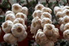 Bossen van knoflook het hangen in een markt stock fotografie