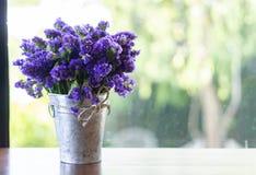 Bossen van lavendel royalty-vrije stock foto's