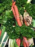 Bossen van organische soepgroenten Royalty-vrije Stock Foto's