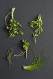 Bossen van peterselie, basilicum, munt, thyme en uispruiten Stock Foto's