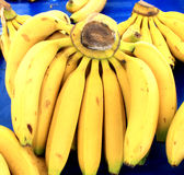 Bossen van rijpe bananen Stock Fotografie