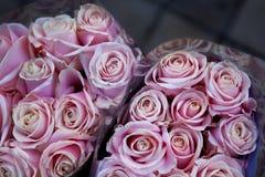 Bossen van rozen royalty-vrije stock afbeelding