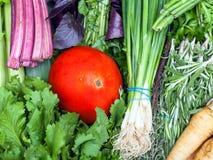 Bossen van vers besnoeiingsgroen en rode tomaat Stock Afbeeldingen