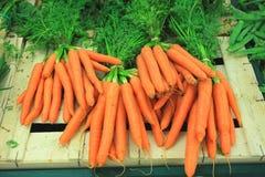 Bossen van verse wortelen op een markt Stock Foto's