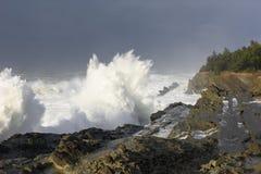 Bosses d'une décennie se brisant contre les falaises du parc d'état d'acres de rivage, baie Orégon de roucoulements photographie stock libre de droits