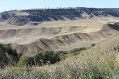 Bosses de terre de ranch Image libre de droits