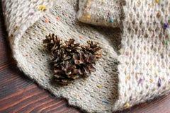 Bosses sur l'écharpe de knit Photo stock