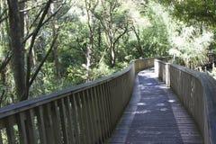 Bossleep met een brug Stock Foto