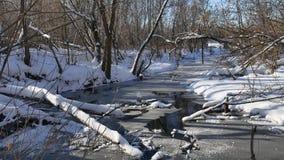 Bosstroomstromen in de sneeuw van de de winter bosaard, landschap stock footage