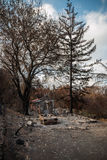 Bostads- egenskap som förstörs i brand Arkivfoto