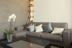 Bostads- inre av modern vardagsrum Royaltyfria Bilder