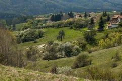 Bostads- område av den bulgarian byn Plana i skog och olika träd med det nya bladet och blomningen på vår Arkivfoto