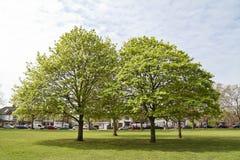 Bostadsområde med parkerar och allmänningar Arkivbild