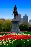 Boston-allgemeiner Garten Stockbilder