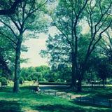 Boston błonie Obraz Royalty Free