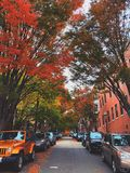 Boston beacon area alley with brick red buildings and trees on both sides stock photo