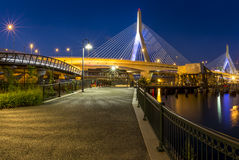 boston brozakim Royaltyfri Foto