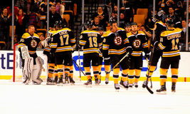 Boston Bruins Royalty Free Stock Image