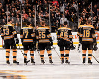 Boston Bruins Fotografia de Stock Royalty Free