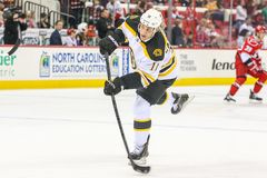 Boston Bruins center GREGORY CAMPBELL Royalty Free Stock Photography