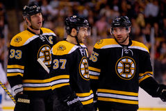 Boston Bruins Chara, Bergeron & Boychuk Royalty Free Stock Photo