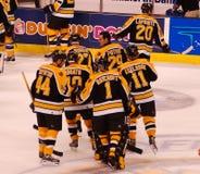 Boston Bruins d'annata Fotografia Stock Libera da Diritti