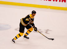 Boston Bruins Defenseman Zdeno Chara Royalty Free Stock Photos