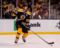 Boston Bruins Defenseman Zdeno Chara Stock Image