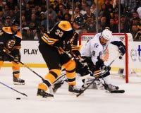 Boston Bruins Defenseman Zdeno Chara Stock Image