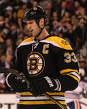 Boston Bruins Defenseman Zdeno Chara Royalty Free Stock Photo