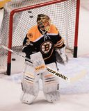Anton Khudobin. Boston Bruins goalie Anton Khudobin, #35 Royalty Free Stock Photography