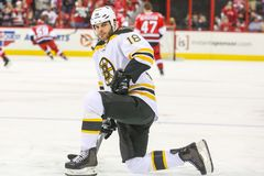 Boston Bruins right wing NATHAN HORTON Stock Photos