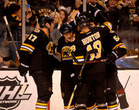 Boston Bruins score a goal. Stock Images