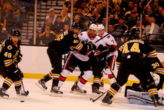 Boston Bruins v. Ottawa Senators NHL Hockey Stock Images