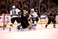 Boston Bruins v. San Jose Sharks (NHL Hockey) Royalty Free Stock Photo