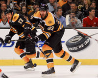 Boston Bruins-Verteidiger Zdeno-Charaban Stockbild