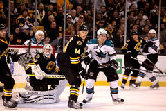 Boston Bruins vs. San Jose Sharks Royalty Free Stock Photography