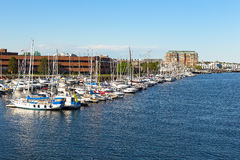 Boston city harbor in summer, USA. Royalty Free Stock Images