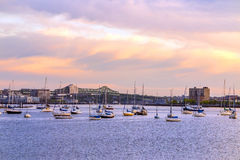 Boston city skyline view with sailboats Stock Photography